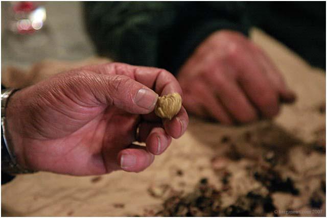 The last roast chestnuts of the season
